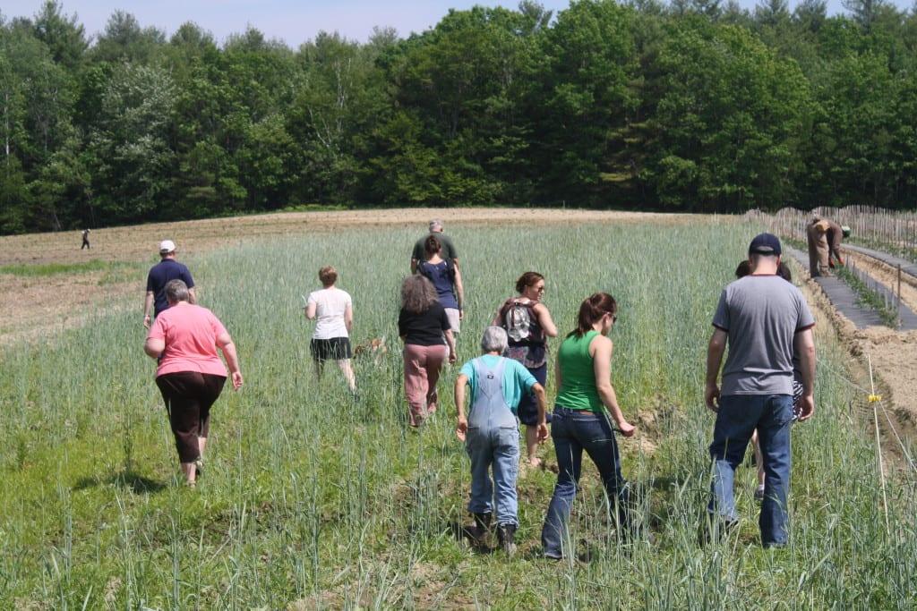 Belanger Farm Tour_06.11.15 (6)