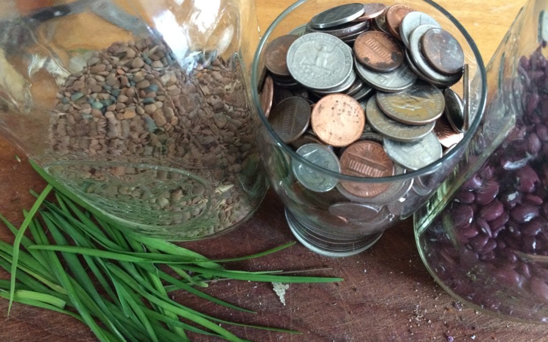 Living the Food Charter: Loose Change Yields Unexpected Rewards